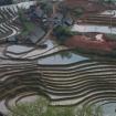 vietnam2009_20090304_4985