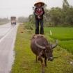 vietnam2009_20090309_3873